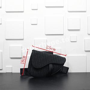 Dior Saddle Bag (All Black)